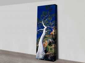 Buy Ghost Gum Framed Panoramic Artwork