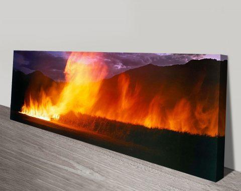 Cane Fire Print by Peter Lik Australia