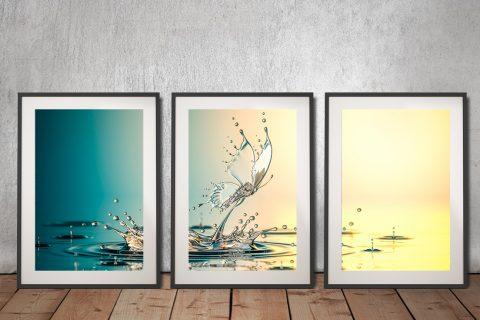 Buy Water Butterfly Triptych Art Cheap Online
