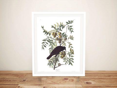 American Crow Classic Art Print on Canvas