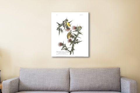 Affordable Audubon Goldfinch Wall Art AU