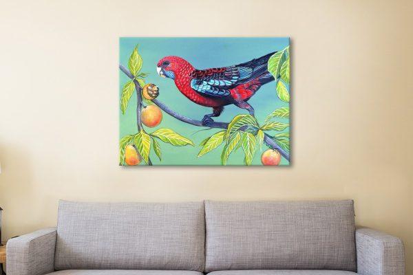 Buy Ready to Hang Colourful Australian Art