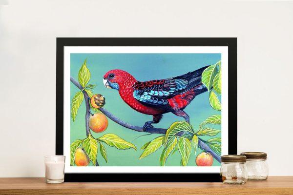Buy Australian Wildlife Wall Art Gift Ideas AU