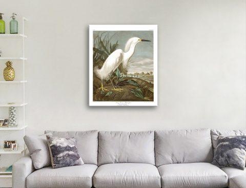 Classic Audubon Wall Art for Sale Online
