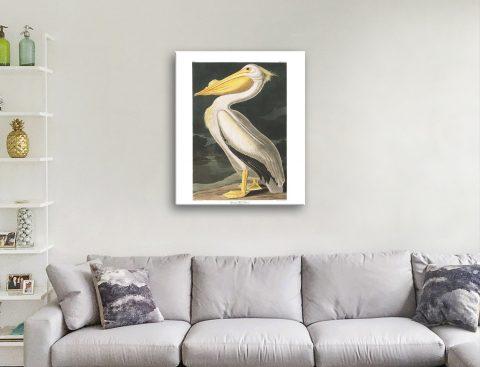 Get Classic Audubon Wild Bird Prints Online