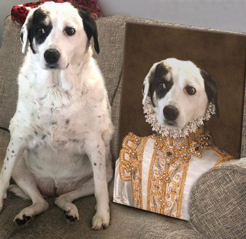 Buy Princess Custom Pet Portrait Artwork