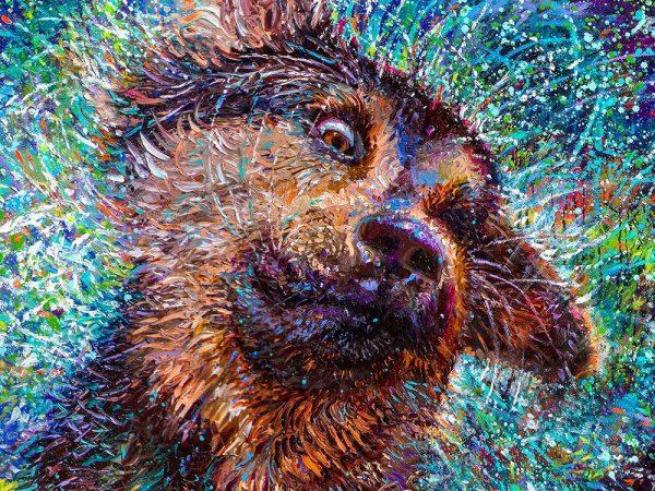 Salvador Iris Scott Art Detail