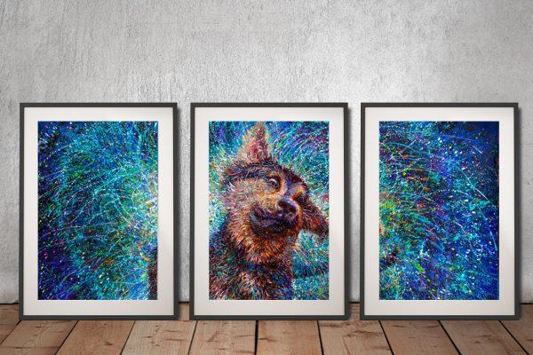 Salvador iris Scott 3 Piece Framed Wall Art