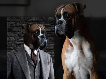 Dapper Dog Personalised Pet Prints