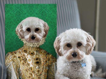 Her Excellency Unique Custom Pet Portraits