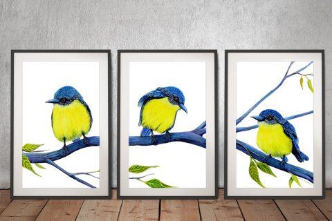 All in a Row Robins Triptych Canvas Art