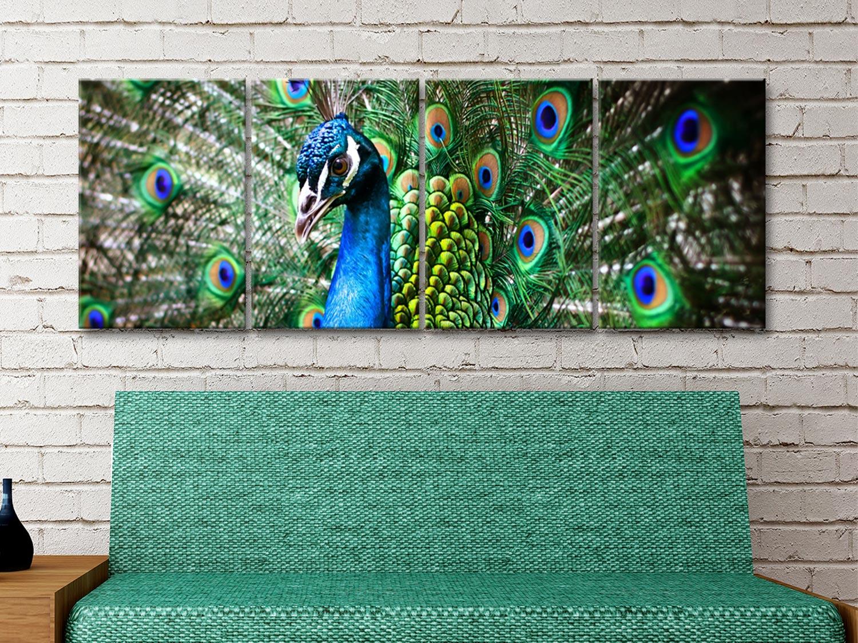 Amazing Peacock 4-Panel Set Gift Ideas AU