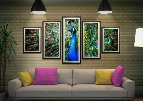 Amazing Peacock Split Panel Wall Art