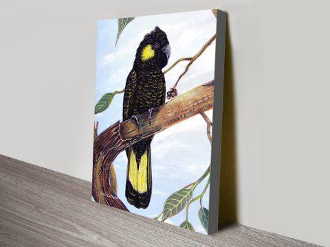 Black Cockatoo Art Great Gift Ideas Online