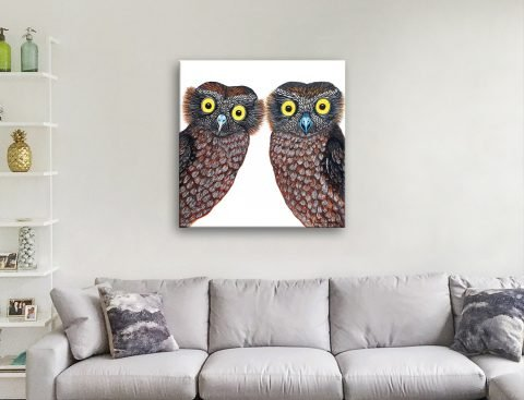 Owls Colourful Contemporary Art Online