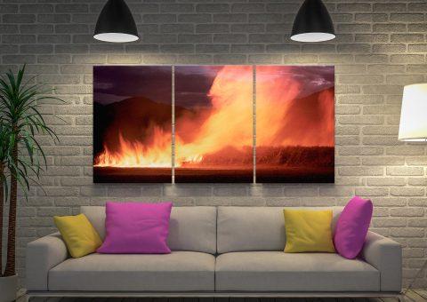 Cane Fire Triptych Peter Lik Canvas Set