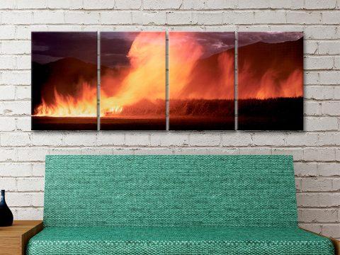 Cane Fire by Peter Lik Home Decor Ideas AU
