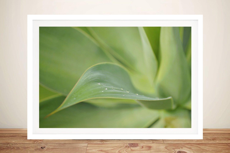 Morning Flow Framed Noel Buttler Artwork AU