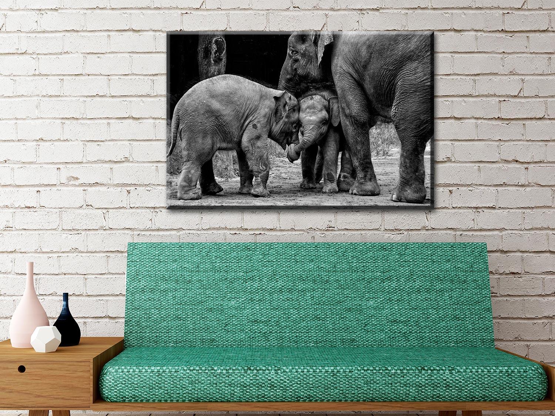 Ready to Hang Elephant Wall Art Cheap Online