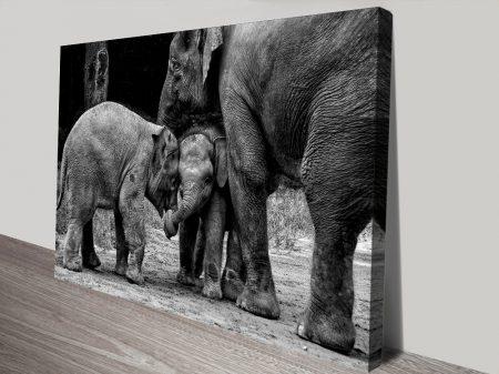 Friends Forever Elephant Artwork on Canvas