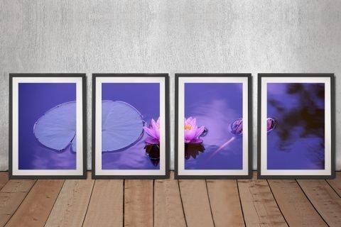Framed 4-Panel Lotus Flower Art for Sale
