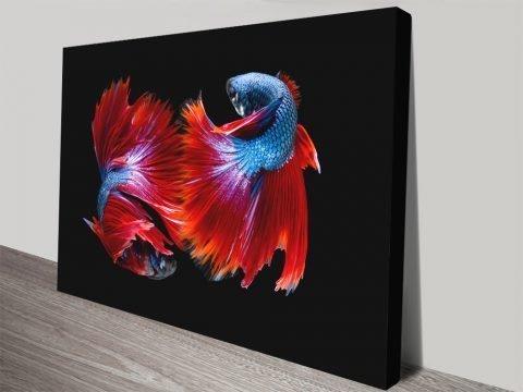 Colourful Fish Wall Art Unique Home Decor