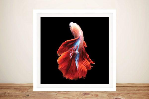Colourful Betta Fish Prints Cheap Online