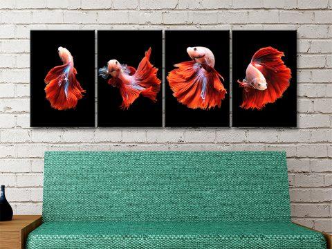 Siamese Fighting Fish Split Canvas Prints
