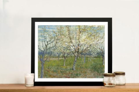 Orchard with Blossoming Apricot Trees Print