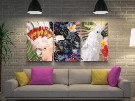 Australian Native Birds Triptych Canvas Art