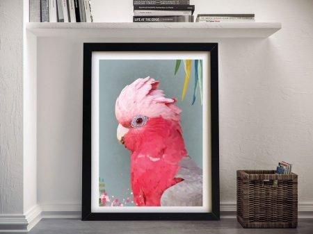 Framed Galah Aussie Bird Canvas Wall Art