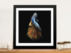 Framed Betta Abstract Fish Print on Canvas