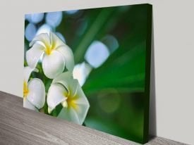 The Fragrance Floral Print on Canvas