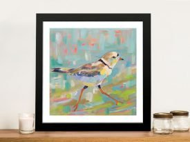 Coastal Plover Wild Bird Wall Art
