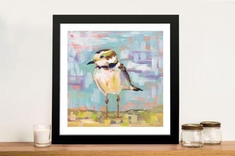 Framed Coastal Plover Jeanette Vertentes Art