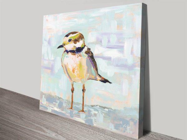 Buy Coastal Plover ll Jeanette Vertentes Art