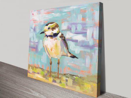 Coastal Plover ll Stretched Canvas Print
