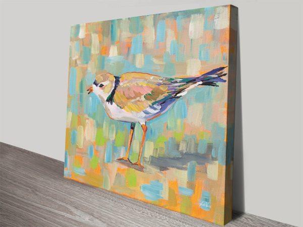 Buy Coastal Plover lV Wildlife Wall Art Print