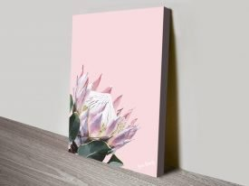 King Protea Pink Floral Print on Canvas