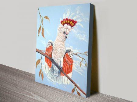 Buy Major Mitchell Cockatoo Aussie Art