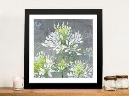 Farmhouse Cleome l Floral Fine Art Print