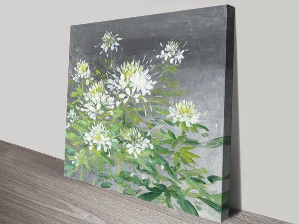 Buy Farmhouse Cleome ll Print on Canvas