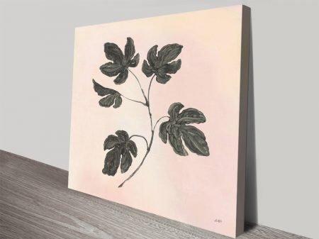 Botanical Study in Blush Fine Art Print