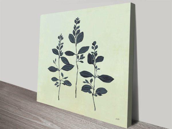 Botanical Study lV Stretched Canvas Print