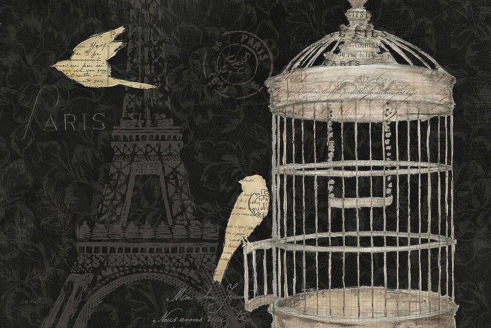 Pretty Parisian Birdcage Art Gift Ideas Online