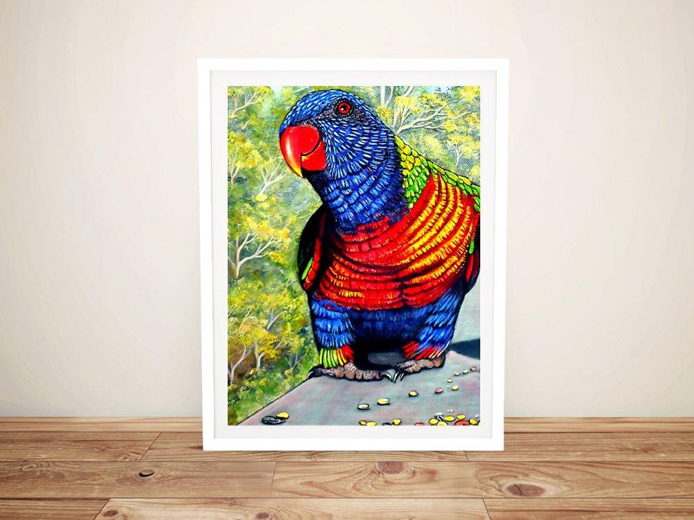 Tucker Time - Rainbow Lorikeet Framed Art