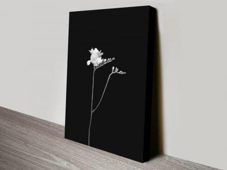 Freesia Floral Black & White Art Print