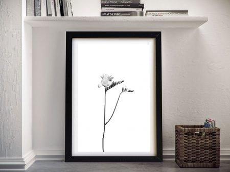 Framed Monochrome Freesia Wall Art