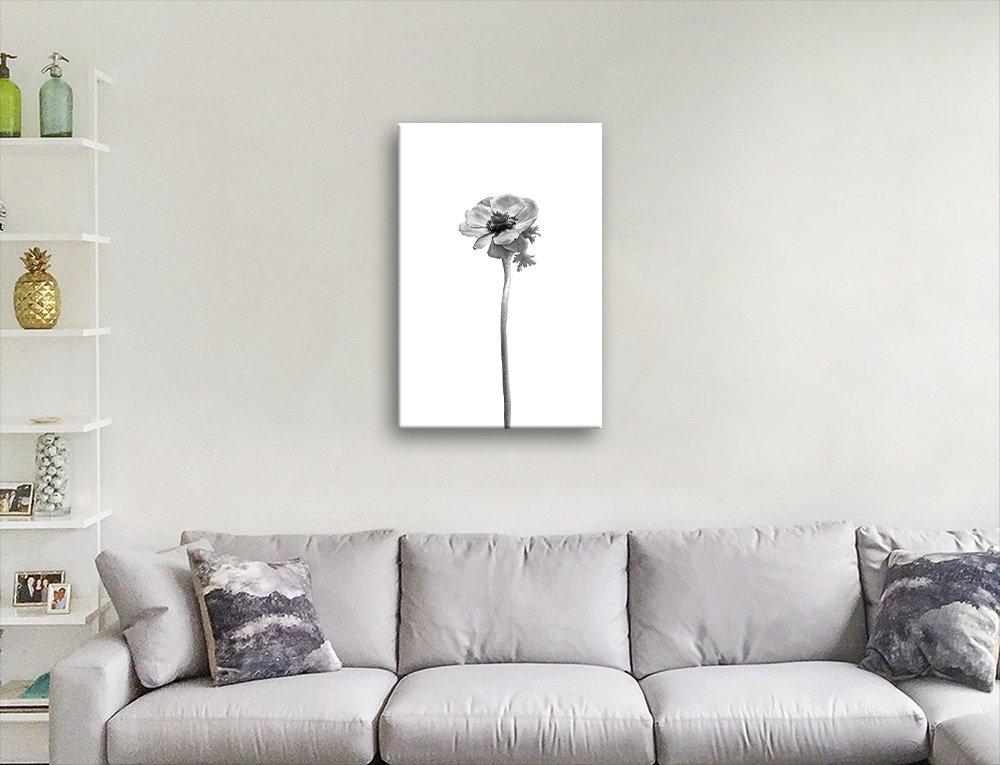 Anemone Coronaria Monochrome Elegant Art
