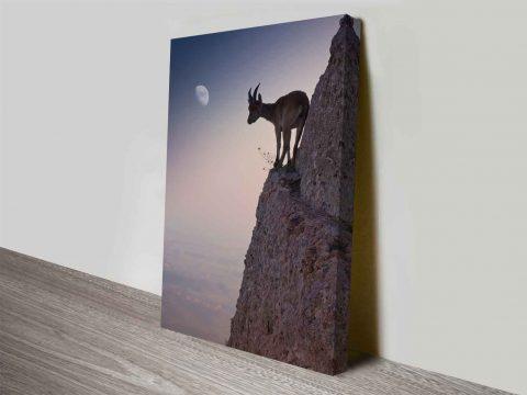 mountain goat custom photo into canvas art